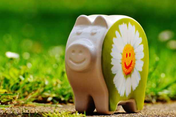piggy-bank-smiley-funny-good-mood-161010.jpeg